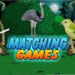 Birds Matching Games