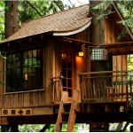 Treasure Tree House Escape