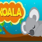 EG Koala