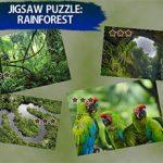 Jigsaw Puzzle Rain Forest