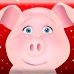 My Talking Pig Mimy
